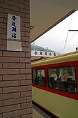 阿里山賞櫻看日出:IMG_0010.jpg