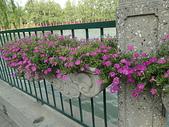 鳳凰奢華北京6日遊:北京行1 434.jpg