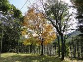 日本東北奧之細道:日本 036.jpg