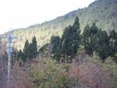 武陵農場:1450225308.jpg