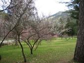 武陵農場:1450225311.jpg