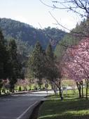 武陵農場:1450225223.jpg