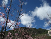 武陵農場:1450225225.jpg