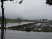 武陵農場:1450225322.jpg