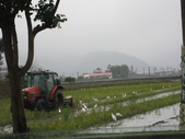 武陵農場:1450225323.jpg