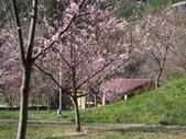 武陵農場:1450225231.jpg