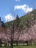 武陵農場:1450225232.jpg