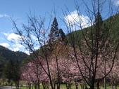 武陵農場:1450225233.jpg