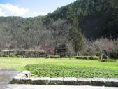 武陵農場:1450225246.jpg