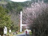 武陵農場:1450225248.jpg