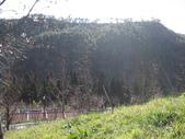 武陵農場:1450225097.jpg