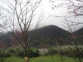 武陵農場:1450225157.jpg