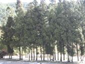武陵農場:1450225167.jpg
