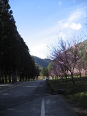 武陵農場:1450225168.jpg
