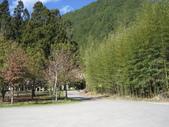 武陵農場:1450225175.jpg
