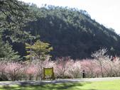 武陵農場:1450225188.jpg
