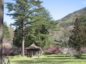 武陵農場:1450225195.jpg