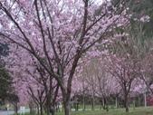 武陵農場:1450225302.jpg