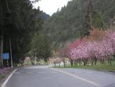 武陵農場:1450225304.jpg