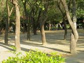 台南公園:IMGP1718.JPG