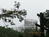 嘉義公園:IMGP2082.JPG