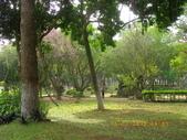 嘉義公園:IMGP2102.JPG