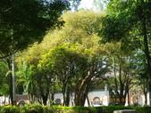 嘉義公園:IMGP1907.JPG