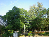 嘉義公園:IMGP1942.JPG