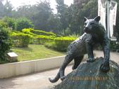 嘉義公園:IMGP2106.JPG