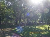 嘉義公園:IMGP1915.JPG