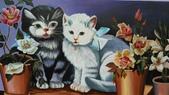 青埔社區貓世界:IMAG0332.jpg