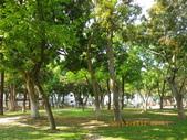嘉義公園:IMGP2167.JPG