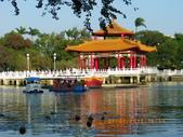 台南公園:IMGP1741.JPG