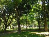 嘉義公園:IMGP1936.JPG