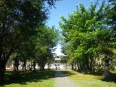 嘉義公園:IMGP1911.JPG