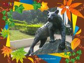 嘉義公園:豹-1