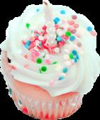 杯型蛋糕:Cupcakes (14).png