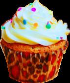 杯型蛋糕:Cupcakes (15).png