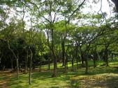 嘉義公園:IMGP1975.JPG