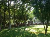 嘉義公園:IMGP1917.JPG