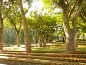 嘉義公園:IMGP1909.JPG