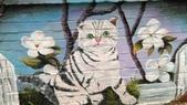 青埔社區貓世界:IMAG0414.jpg
