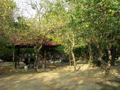 台南公園:IMGP1722.JPG