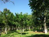 嘉義公園:IMGP1941.JPG