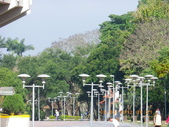 嘉義公園:IMGP1914.JPG