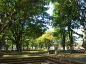 嘉義公園:IMGP1906.JPG