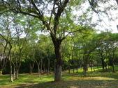嘉義公園:IMGP1971.JPG