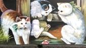 青埔社區貓世界:IMAG0409.jpg
