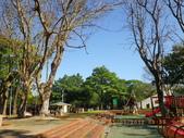 嘉義公園:IMGP1910.JPG