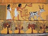 博物綜覽相簿:古埃及農耕圖(引用自史海浮沉)